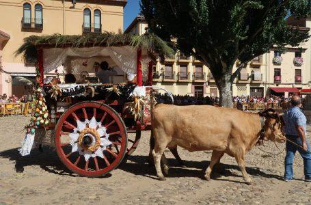 San Froilán, la fiesta más tradicional de la ciudad de León